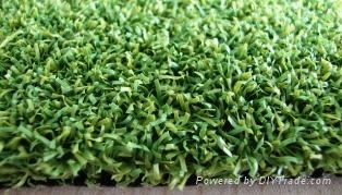 Artificial Turf 1