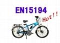 Electric Mountain Bike 1