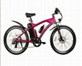 Electric Mountain Bike 2