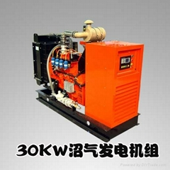 H Series 30KW Gas Engine Generators