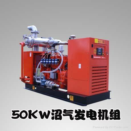 H Series 50KW Gas Engine Generators 1