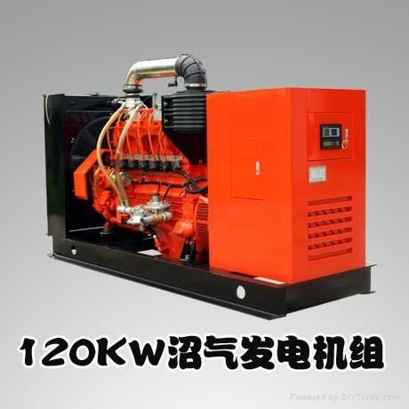 H Series 120KW Gas Engine Generators 1