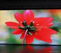 soft LED video display (pitch 20mm)