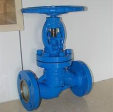 Ceramic globe valve