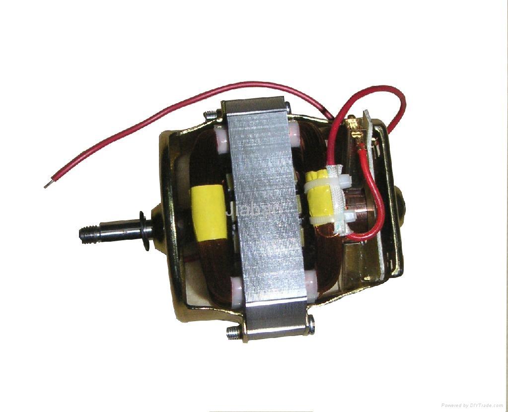 Micro motor 1