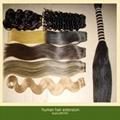 Brazilian Virgin Human Hair Extensions 4