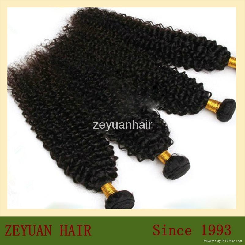 Unprocessed Virgin Remy Brazilian Human Hair Extension 3