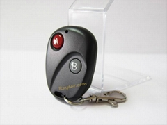 315 MHz Buick /2262 Fixed Code  Wireless Remote Control with Two Keys PT001