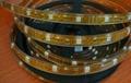 LED strip SMD 5050 30LEDS/M Silicone
