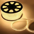 220V LED strip SMD3528 60LEDS/M IP68