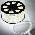 220V LED strip SMD3528-60LEDS/M IP68 1
