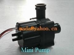Mini pump / water heater pump