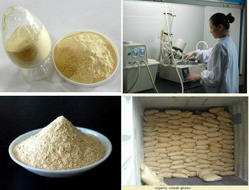 Food Grade Wheat Protein 1