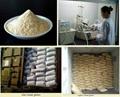 Vital Wheat Gluten Powder 1