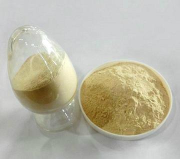 Vital Wheat Gluten Powder 2
