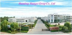 Shandong Shuangyi Group Co., Ltd