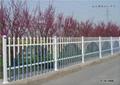围墙护栏  5