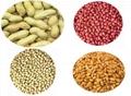 peanut kernels 3