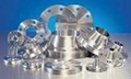 Stainless Steel Flanges 1