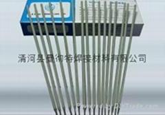 Ni102镍基焊条