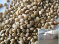 kasha- whole roasted buckwheat stuff  1