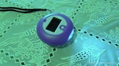 LED太陽手搖能手電筒