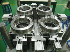 Mold for South Africa Customer