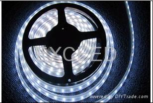 LED Strips,LED Street Light 2
