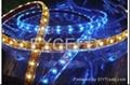 LED Strips,LED Street Light 4