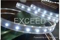 LED Strips,LED Street Light 5
