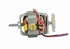 Long lifetime electric blender/juicer motor