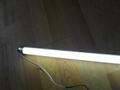 T8LED灯管 5