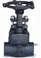 Forged Steel Gate valve