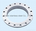 Stainless steel flange 316L  2