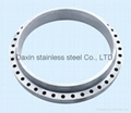 Stainless steel flange 316L  4