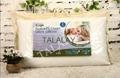 Latex pillow, talalay, natural pillow