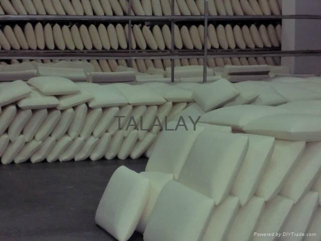 Latex pillow, talalay, natural pillow  ST-65 5