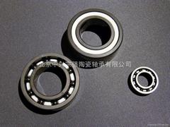 Ceramic deep groove ball bearing(basic)