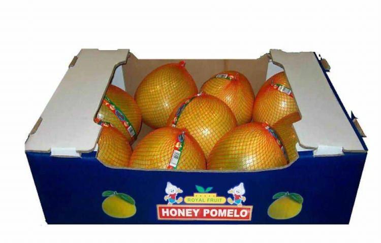 honey pomelo 3