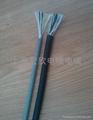 拖鏈電纜 1