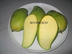 Mangoes Fruit