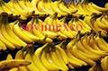 banana Fruit 1