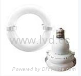 LVD induction lampsource-saturn