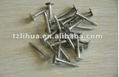 Stainless Steel Concrete Nail 4