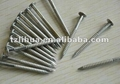 Stainless Steel Ring Shank Nail