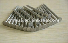 Stainless steel roofing nail