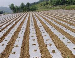 優質農膜批發