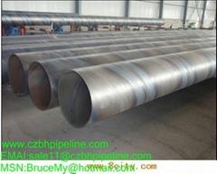 Seamless Steel Pipe(tube)