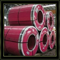 Colored and Prepainted Steel Coils