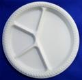 4 compartment biodegradable disposable